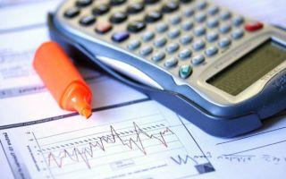УСН 2019: какие налоги должен платить ИП