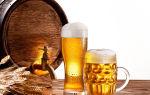 Правила продажи пива для ИП в 2021 году