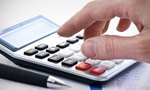Общий режим налогообложения (ОСНО) в 2021 году: бухгалтерская и налоговая отчетность ИП